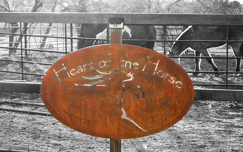 Heart of the Horse Ranch- Equine Therapy